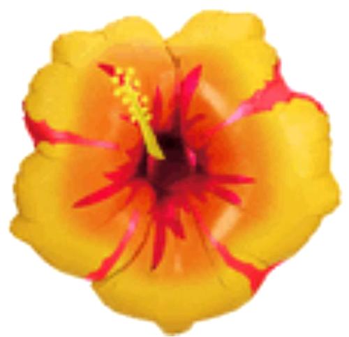 Globo 3 Aiwan Flower