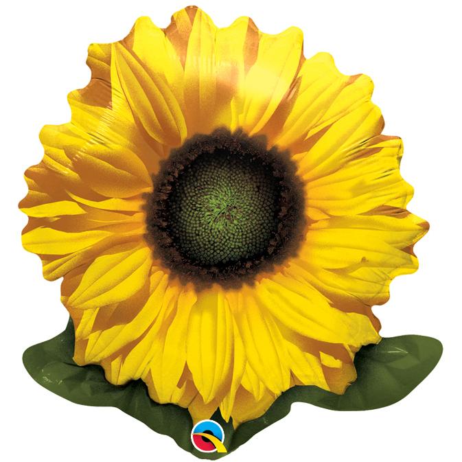 Globo Flower Golden Sunflower