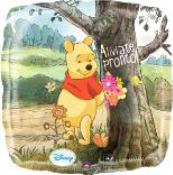 Globo Pooh Aliviate