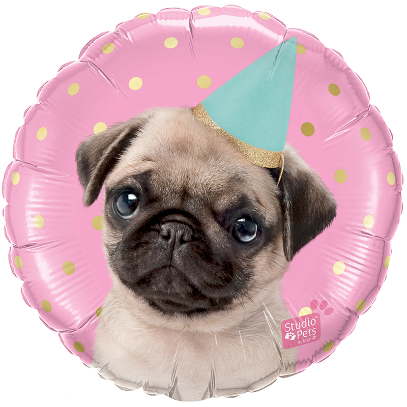 Globo Party Pug